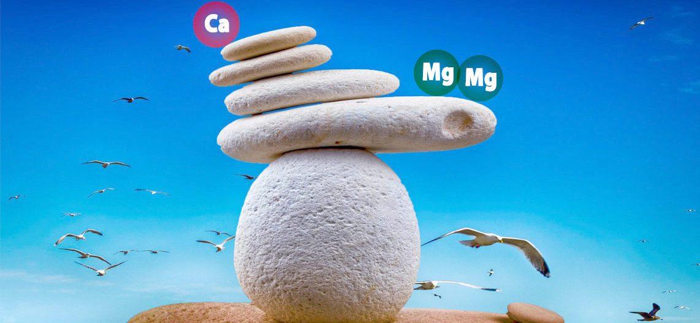 Magnezijum i kalcijum: neophodna ravnoteža